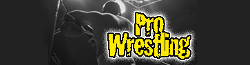Pro Wrestling