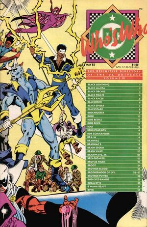 Cover for Who's Who: The Definitive Directory of the DC Universe #3
