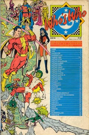 Cover for Who's Who: The Definitive Directory of the DC Universe #4
