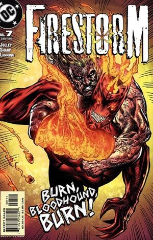 Cover for Firestorm #7