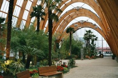 Sheffield Winter Garden1