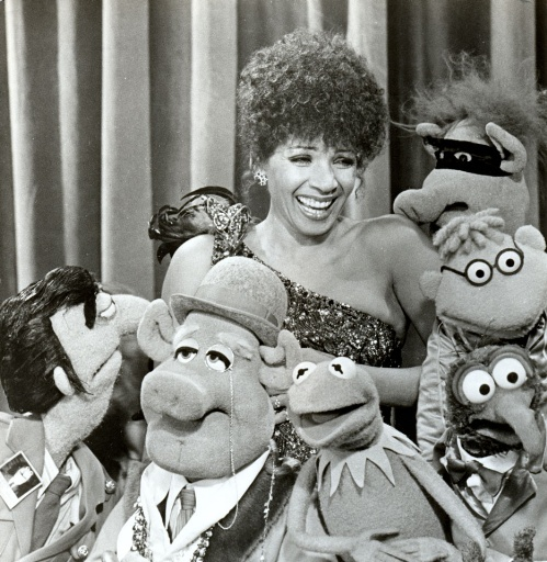 http://images3.wikia.nocookie.net/__cb20060301210618/muppet/images/1/13/Shirleybassey.jpg