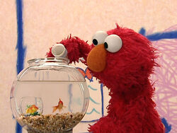 ElmosWorld.Pets