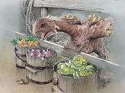 Chocobo Digging and Gardening2