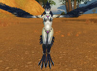 Witchwing Roguefeather