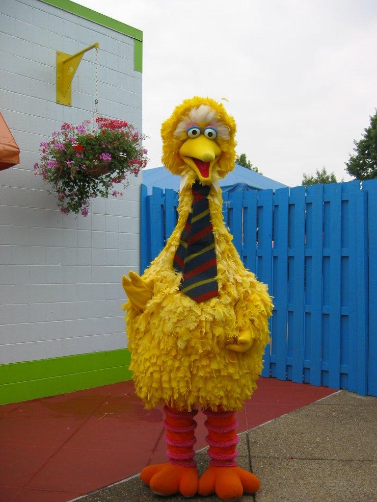 Sesame Workshop Big Bird Lives On We Receive Very