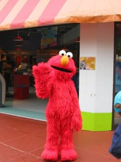 Elmo sp