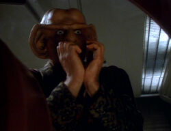 Quark begs, The Nagus