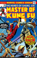 Master of Kung Fu 36