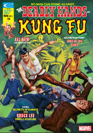 Deadly Hands of Kung Fu 6