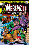 Werewolf by Night 24