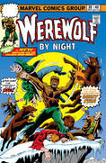 Werewolf by Night 38