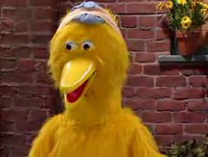 MADTVBigBird