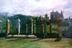 Quidditch Pitch