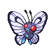 Butterfree DP