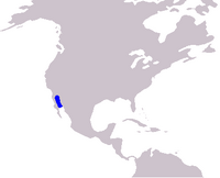 Cetacea range map Vaquita
