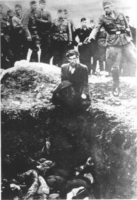 Einsatzgruppen Killing