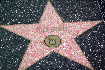 Bigbirdstar