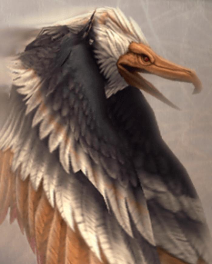Dive Talon.jpg