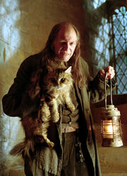 Filch-Norris