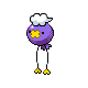 Drifloon DP