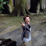 Harrypatronus