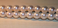 Strand-of-akoya-pearls