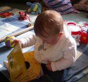 Baby exploring books