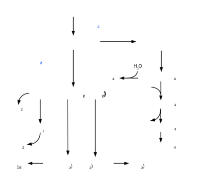 Eicosanoid synthesis