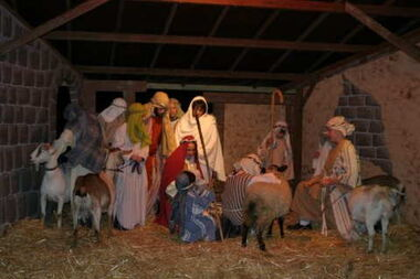 LivingNativity