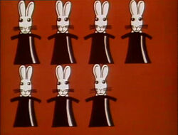 7rabbits