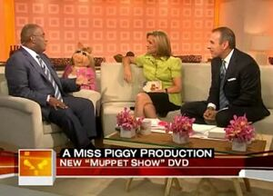 Piggytoday2007