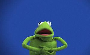 Kermit-hitchcock