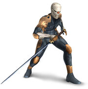 Grey fox