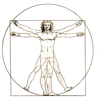 Human anatomy positions