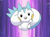 Pachirisu-anime