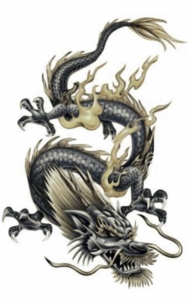Korean Dragon: Korean Yong (Dragonology)