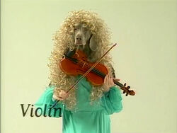 Wegmandogs.Violin