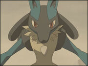 Lucario01LMM