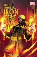 Immortal Iron Fist Vol 1 17