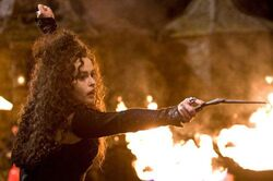 Bellatrix Lestrange HBP