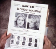 Blondie malone