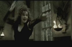Bellatrix dueling
