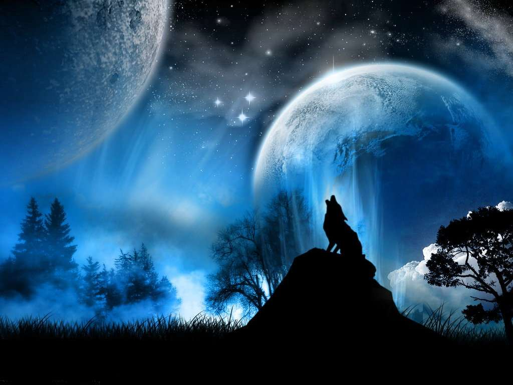 Image - Wolf howling at moon.jpg - Zeldapedia, the Legend ...