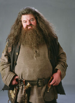 MBTI enneagram type of Rubeus Hagrid