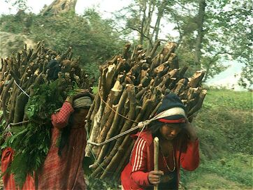 Nepal wood carrying - McArdle 2008