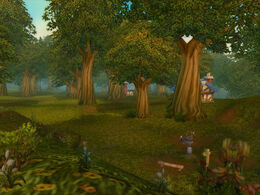 Elwynn Forest