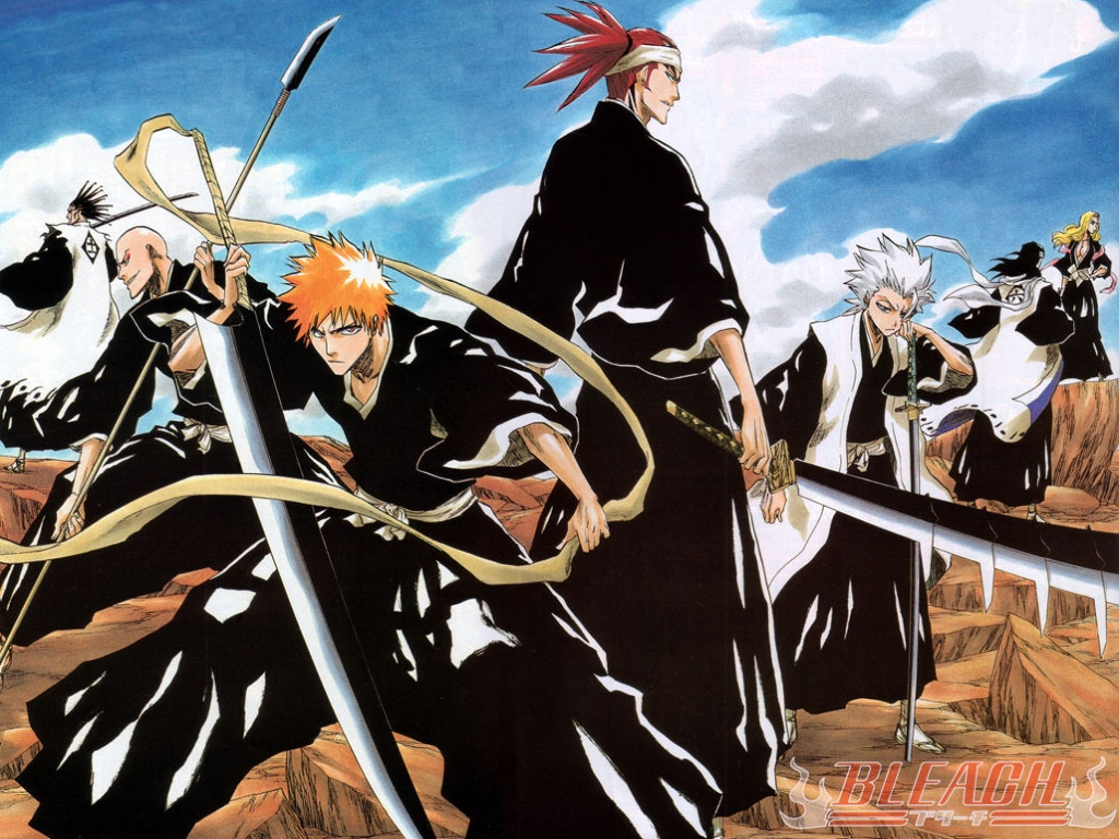 http://images3.wikia.nocookie.net/__cb20090210200824/bleach/es/images/d/d4/Shinigamis.jpg