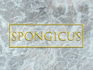 Spongicus