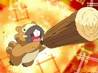 EP480 Bidoof